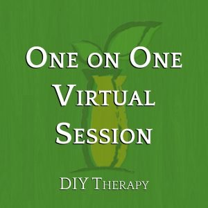 One on One Virtual Session